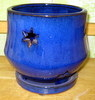 P-LOTUS-49 Morning Star Orchid Pot Blue