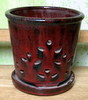 "PA-5 Waikiki Orchid Pot, Tropical Red, 7"" x 6"""