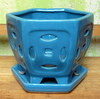 "D-LOTUS-12 Light Blue 7"" x 6"" high"