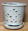 "PF-10 Waikiki Orchid Pot, White Rose, 5.5"" x 5"" OUT OF STOCK"