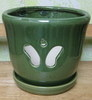 "H-LOTUS34 green butterfly 7"" x 7"" high"
